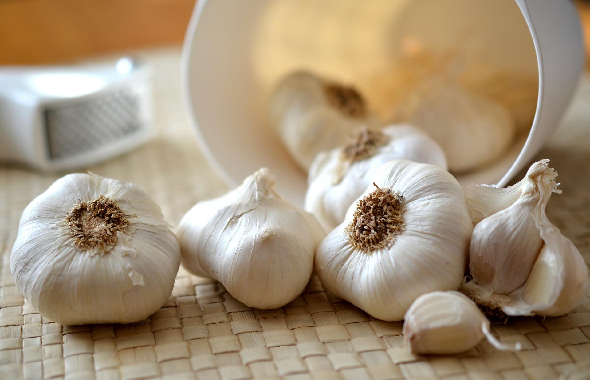 Ce putem trata cu tinctură de usturoi | Doxologia